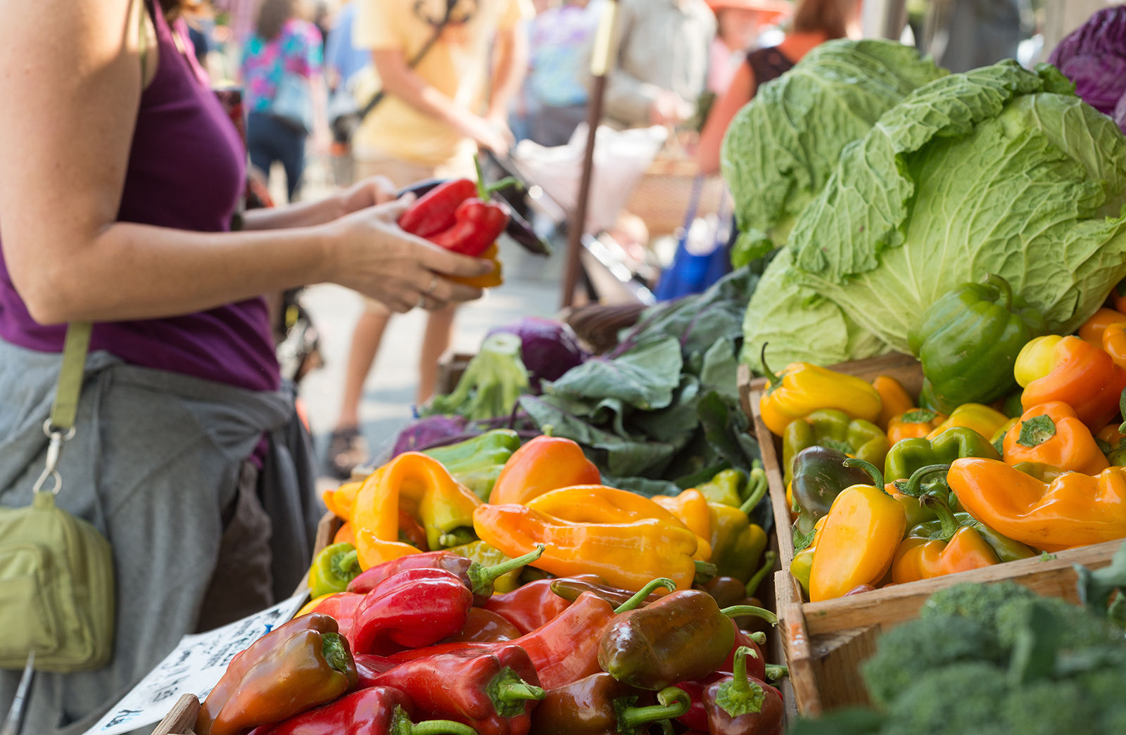 The Regina Farmers Market is just one of the events worth going to from your Regina hotel.